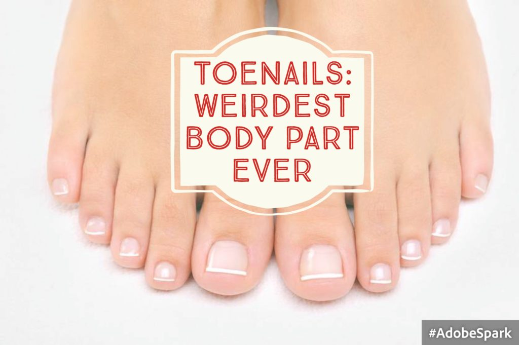 Toenails: Weirdest Body Part Ever